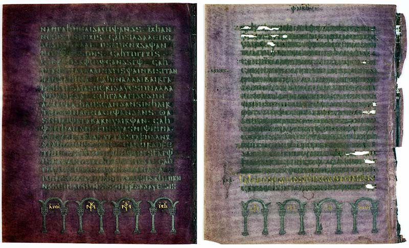 Codex argenteus