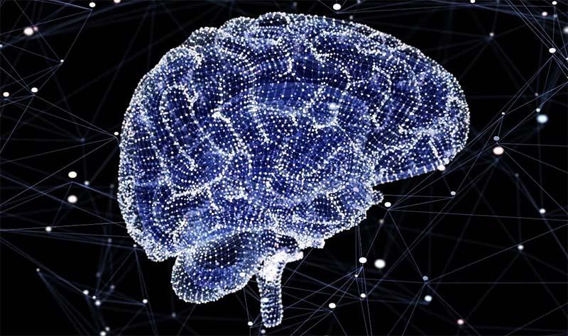capacità cerebrale-9-800x400