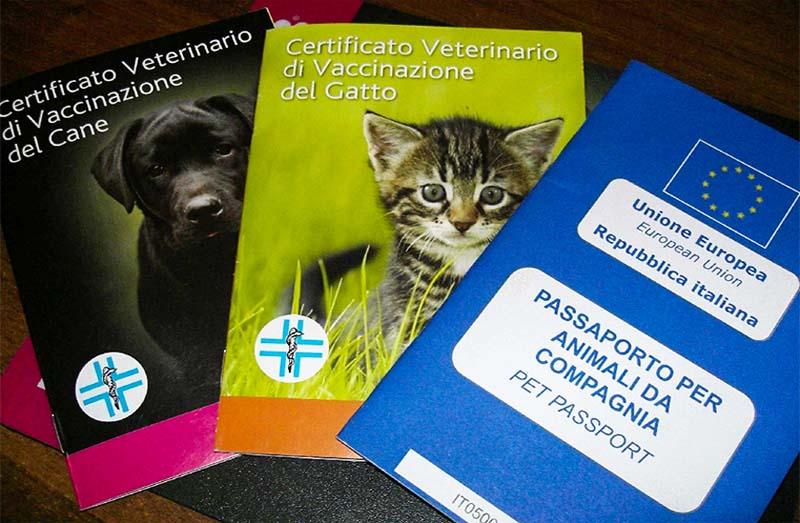 libretto sanitario-4-800x400