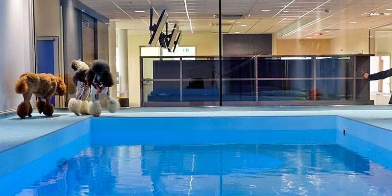 piscina-11-800x400