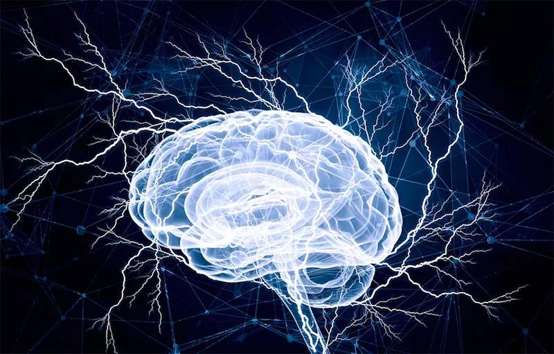 quanto consuma il cervello-11-800x400