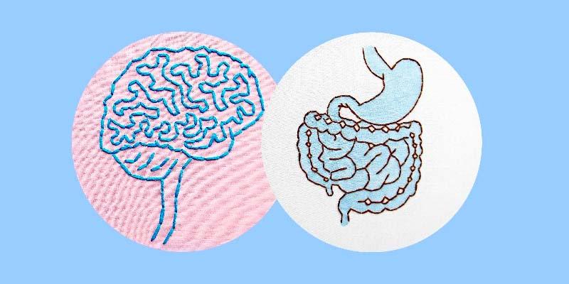 batteri della felicità-4-800x400