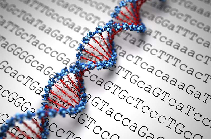 Dulbecco-10-genoma-800x400