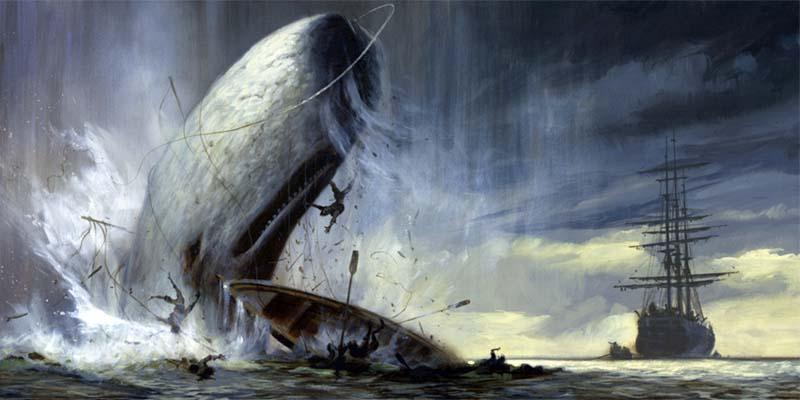 Moby Dick-3-800x400