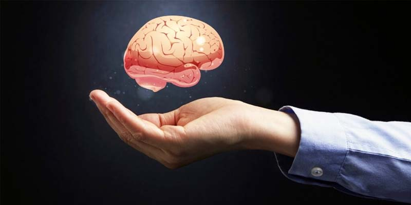 rigenerare il cervello-2-800x400