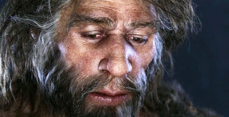 uomo di Neandertal-1-800x400