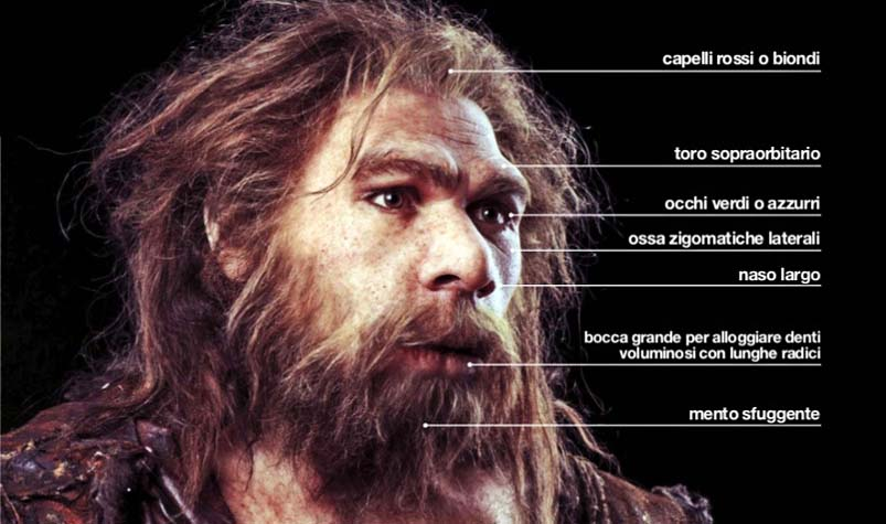 uomo di Neandertal-4-800x400