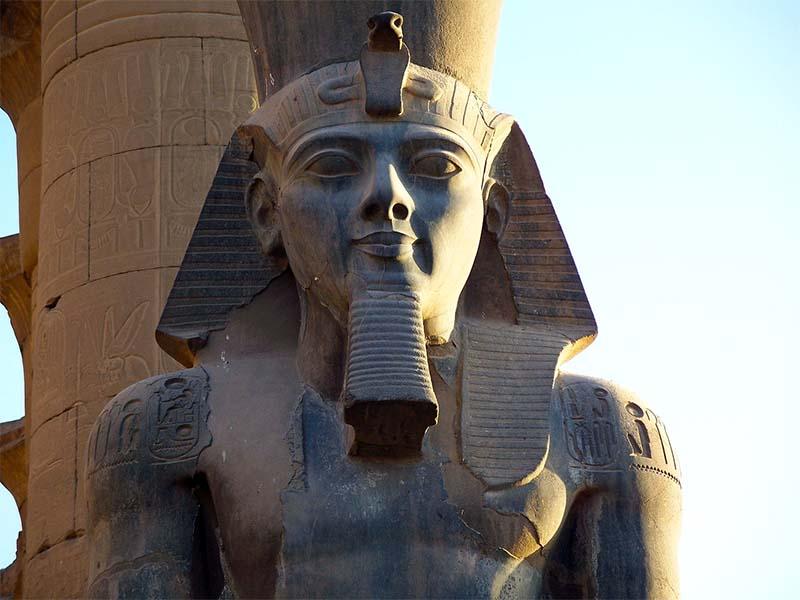 Ramesse-12-800x400