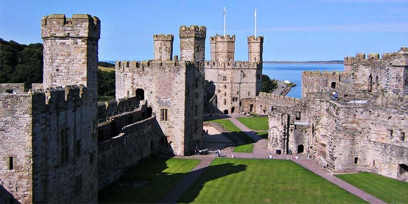 Castle Ward-4-800x400