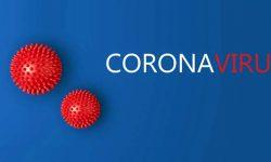 Coronavirus-2-800x400