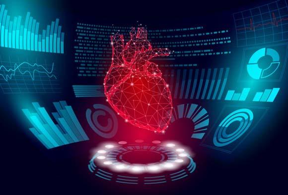 Il cuore-8-800x400