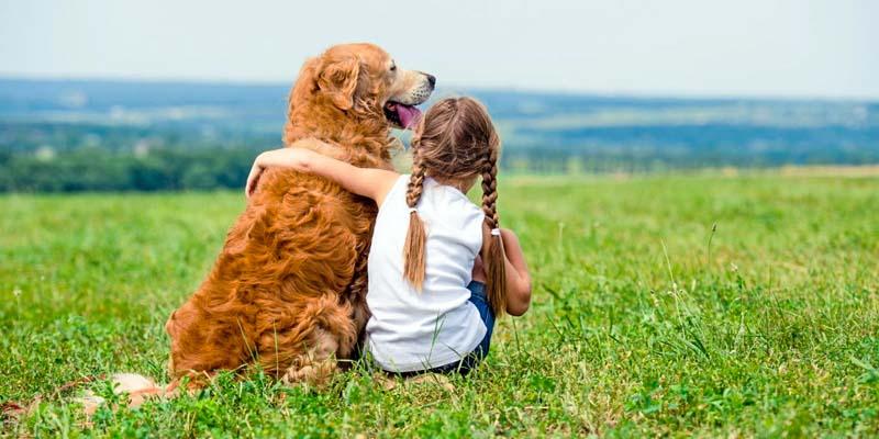 cani e bambini-1-800x400
