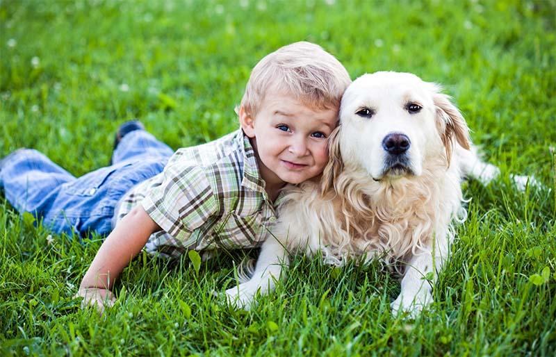 cani e bambini-2-800x400