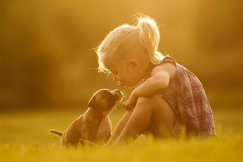 cani e bambini-5-800x400