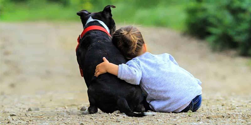 cani e bambini-7-800x400