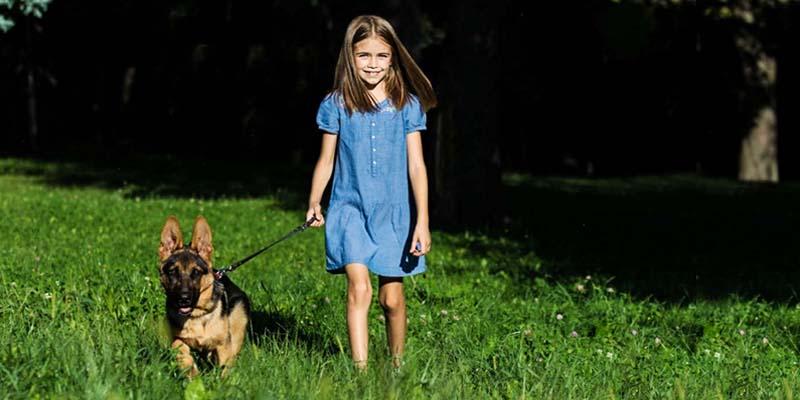 cani e bambini-8-800x400