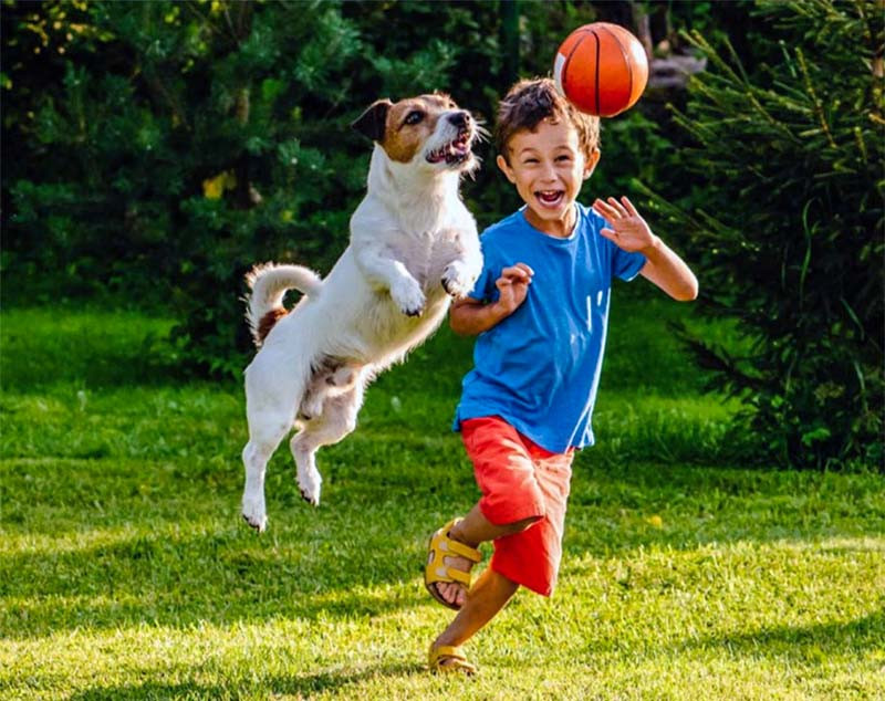 cani e bambini-9-800x400