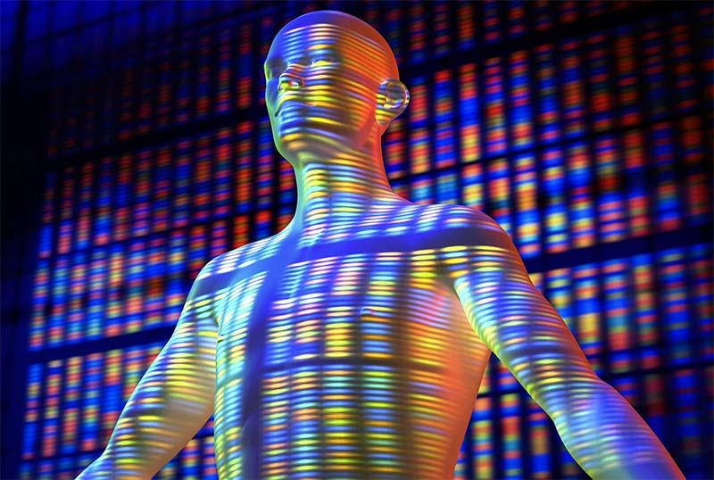Genoma-7-800x400