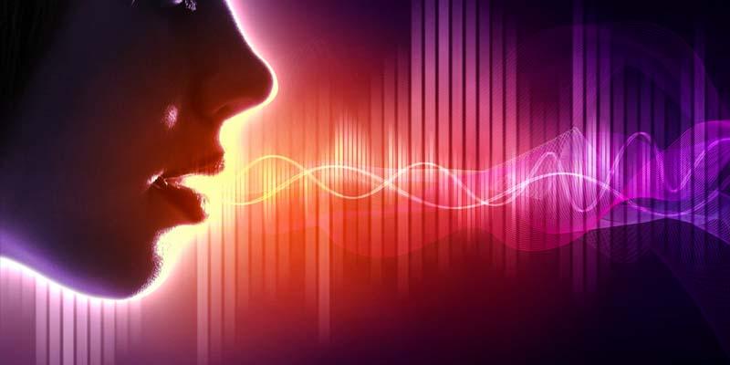 la voce-2-800x400