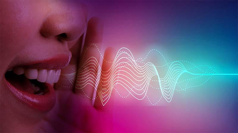 la voce-4-800x400