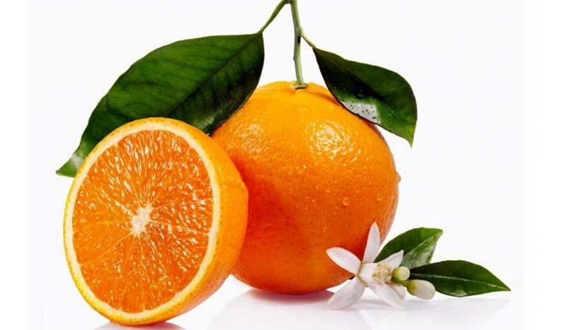 arancia-dolce-4-800x400