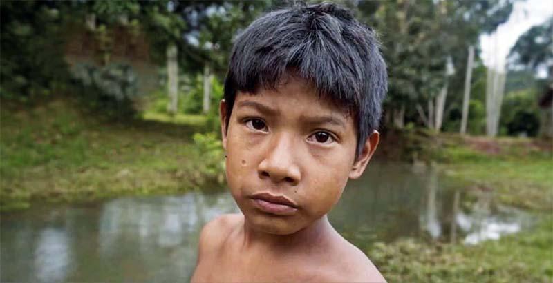 bambino amazonia 13-800x400