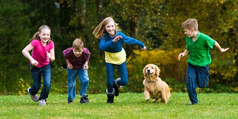 cane e bambino-13-800x400