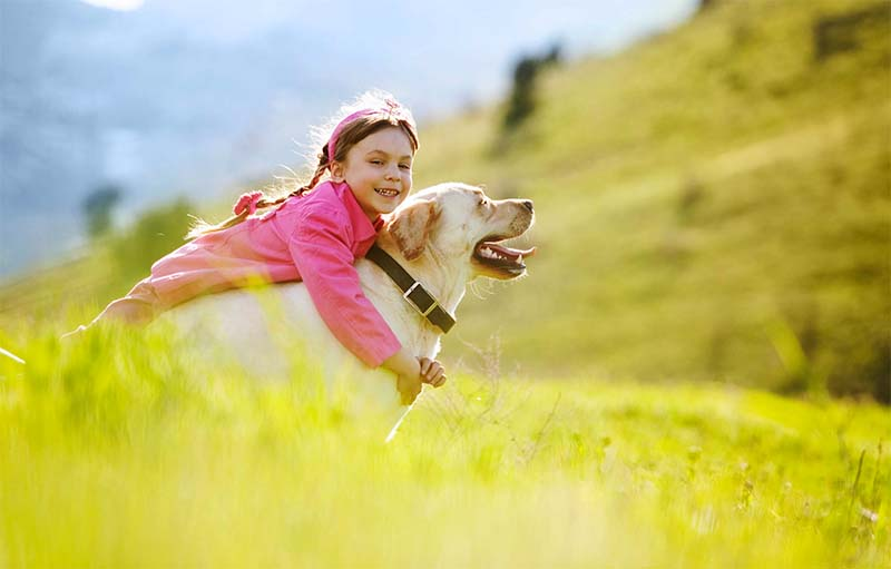 cane e bambino-17-800x400