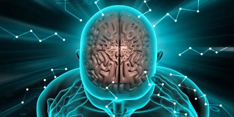 strategie per il cervello-2-800x400