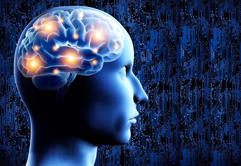 strategie per il cervello-3-800x400