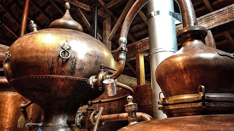 distillazione-whisky-7-800x400