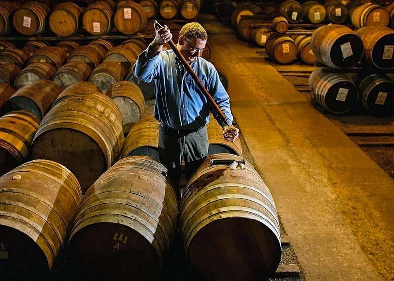 maturazione botti whisky-10-800x400