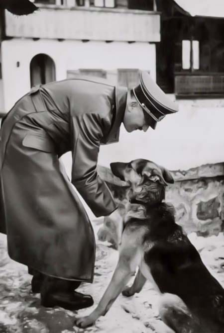 Blondie cane di Hitler