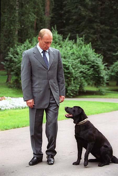 Koni cane di Vladimir Putin