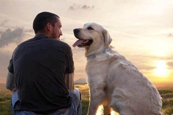 avere un cane fa bene alla salute