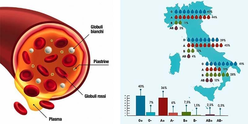 gruppo sanguigno-10-800x400
