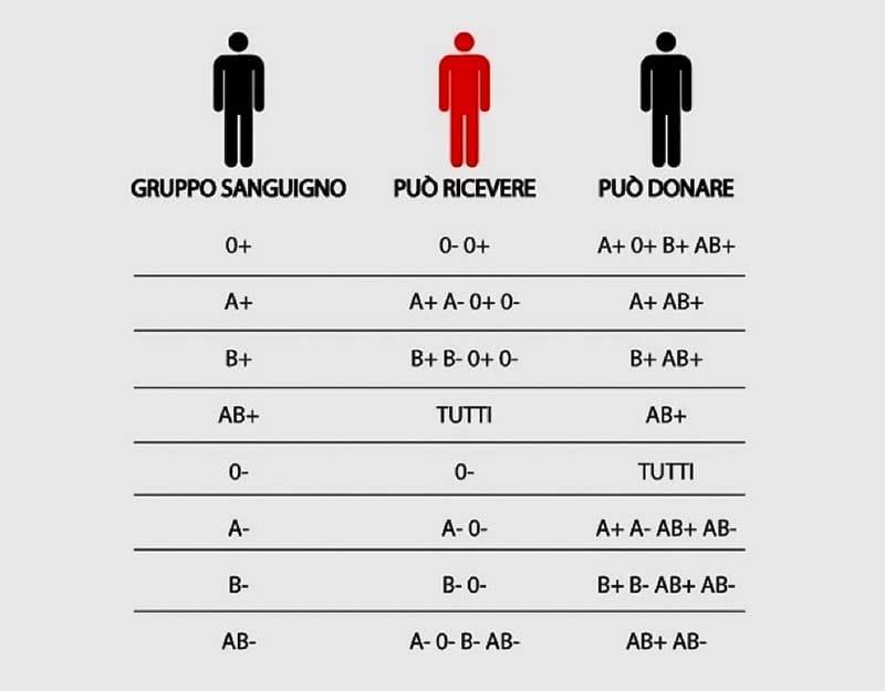 gruppo sanguigno-8-800x400