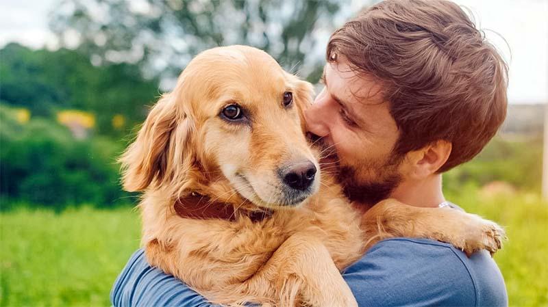 amicizia cane uomo-2-800x400