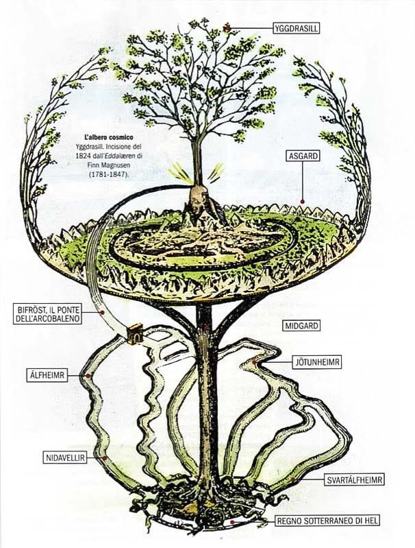 albero cosmico-10-800x400