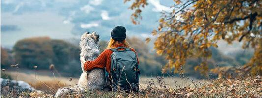 Il cane in montagna: cosa bisogna sapere per essere una perfetta coppia escursionista